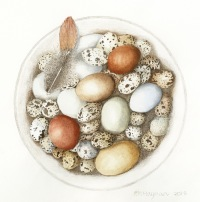 Trisha-Hayman-Bowl-Eggs