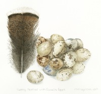 Trisha-Hayman-Eggs-Feather