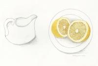Trisha-Hayman-Lemons