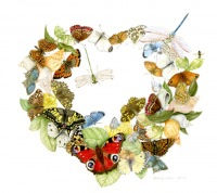 Trisha-Hayman-Heart-of-Butterflies