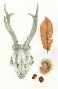 Trisha Hayman Skull Leaf
